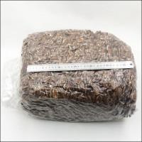 Пекан орех очищенный сырой, МЕКСИКА, (кор (13.6 кг))